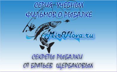 Братья Щербаковы. Рыбалка Щербаковы. Секреты рыбалки братьев Щербаковых.