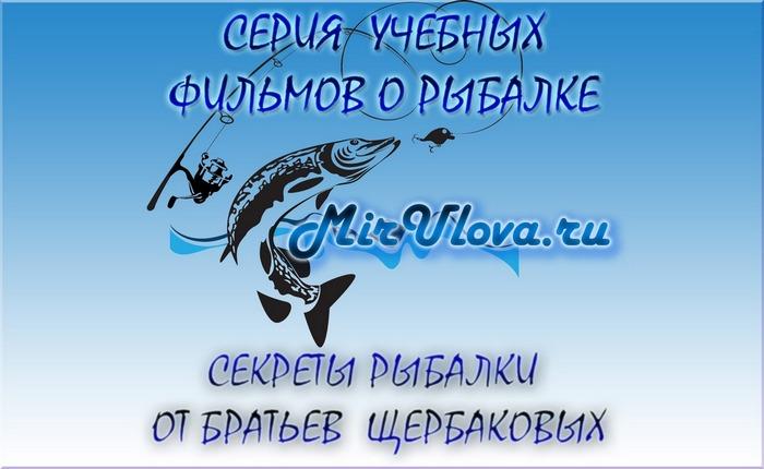 Братья Щербаковы выпуск 31. Рыбалка Щербаковы. Секреты рыбалки братьев Щербаковых.
