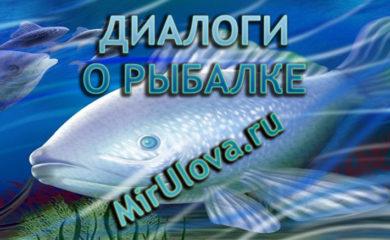 Фото для Диалоги о рыбалке №112. Зимняя рыбалка. Глухозимье