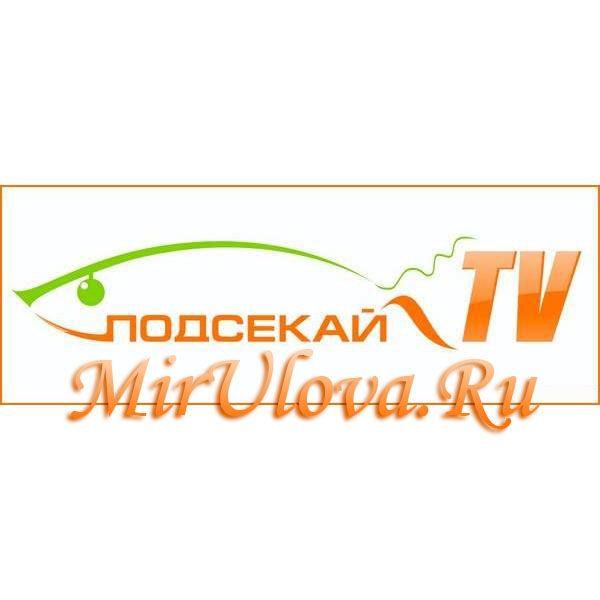 Photo of Прямой эфир телеканала Подсекай-TV онлайн