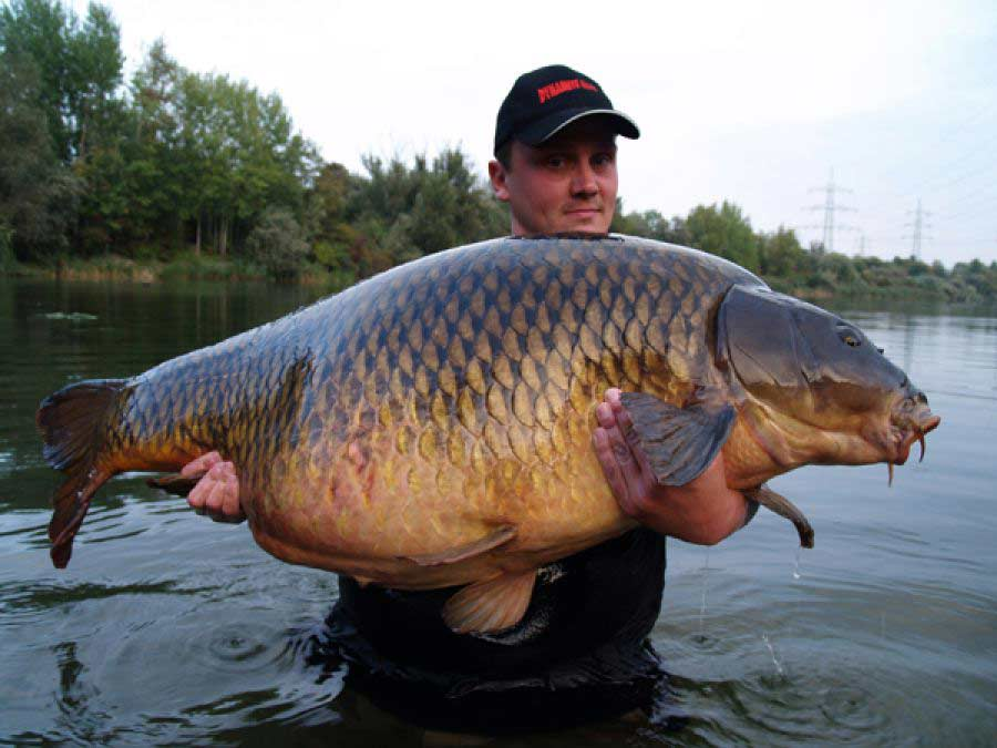 не клюет рыба в ситнянском озере
